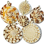 "Wholesale Genuine Shell Pendants Natural shell pendants assorted sizes & shapes 1 1/2"" - 2"" (1 dozen minimum)"