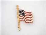 Americana Large Flag Pins