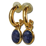 Genuine Sodalite Scarab Earrings